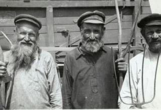 евреи-колхозники